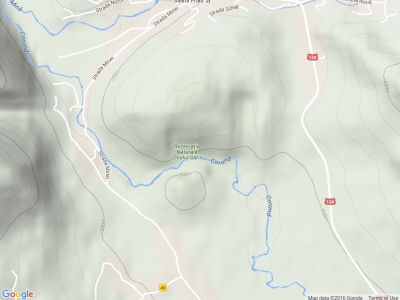Canionul de Sare