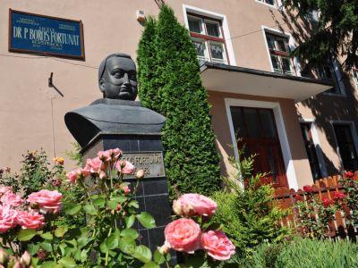Dr. P. Boros Fortunat Emlékmű