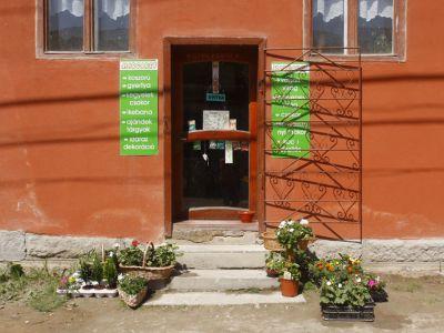 Flowershop Margaretta 2