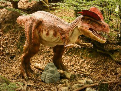 Dinoparc - Parcul Dinosaurilor